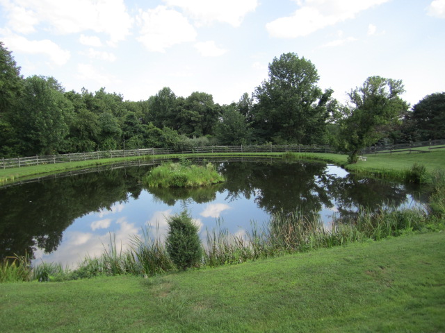 Restored beauty from chemical treatment and stocking of grass carp